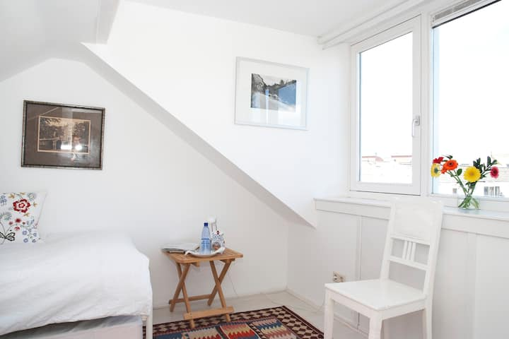 Sleep in the attic in Haarlem!