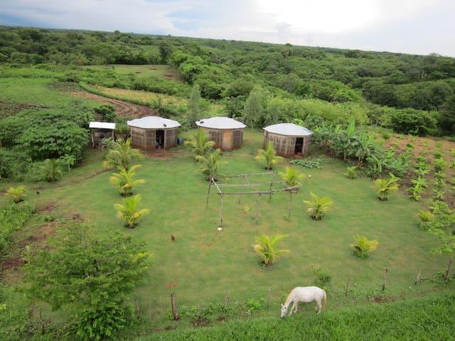 Nicaragua Farmstay Finca Joco Mico