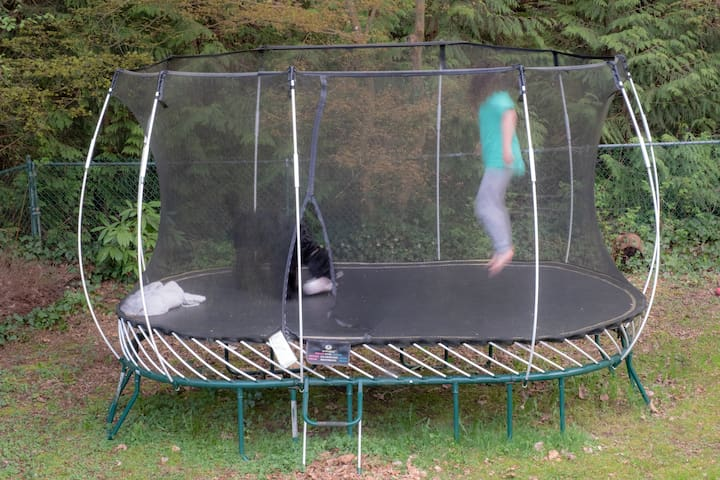 Feel free to jump on our trampoline!