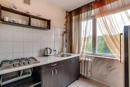 Cosy, wi-fi, centre, nice view - Lemberg - Wohnung