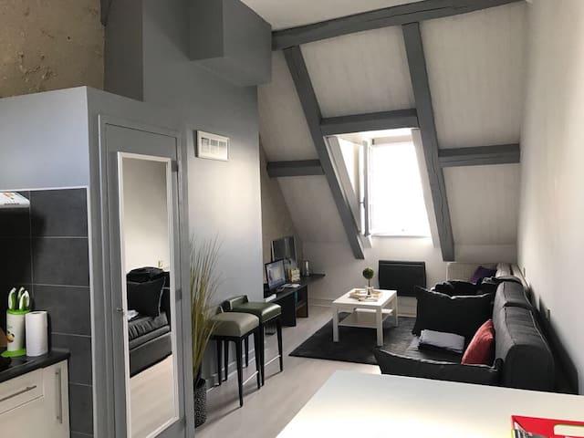 Studio très calme vue sur la Loire en plein centre - Amboise - Lejlighed