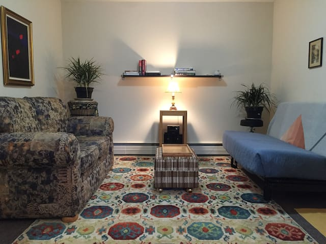 Confortable et chaleureux appartement centre Magog