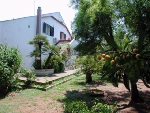 Lecce villa con piscina - Lecce - Villa