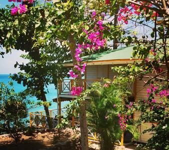 Two Cotton Tree House