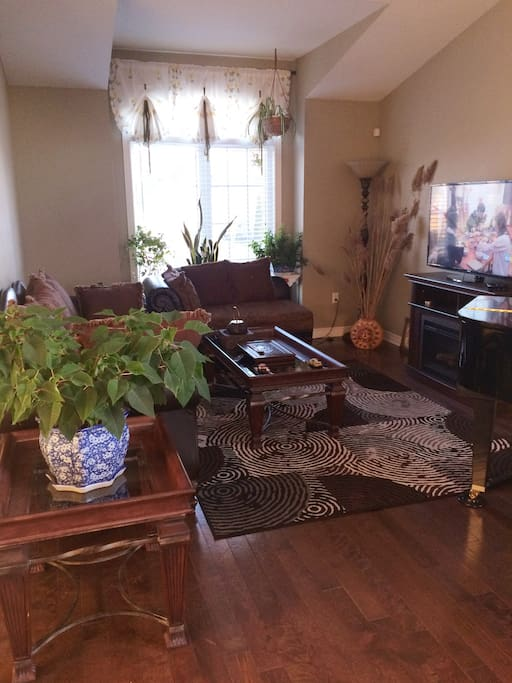 温暖,静谧的客厅。