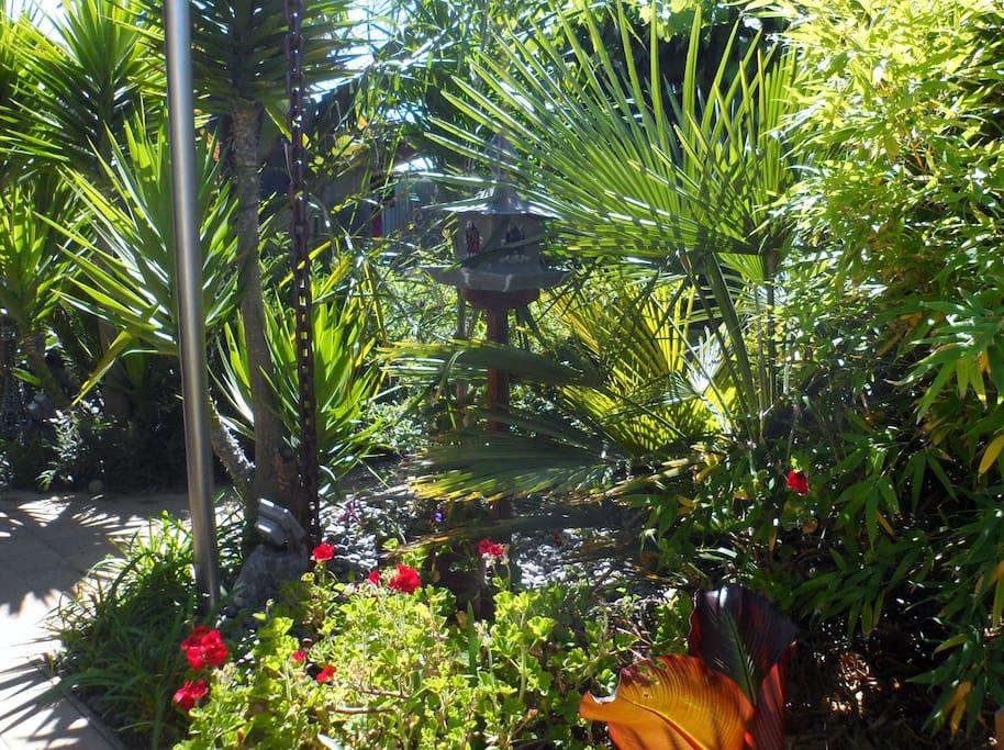 Sub-tropical garden (relax in the hammock)