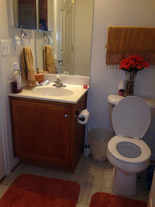 basement for rent townhouses for rent in fredericksburg virginia