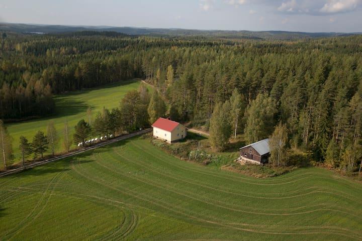 Talo Savonlinnan seudulla Sulkavalla