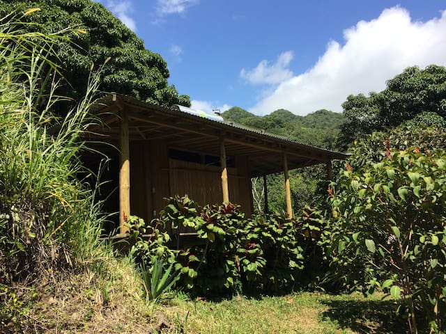 Casa del Mundo: puertoricorainforestretreat - Peñuelas - Dům