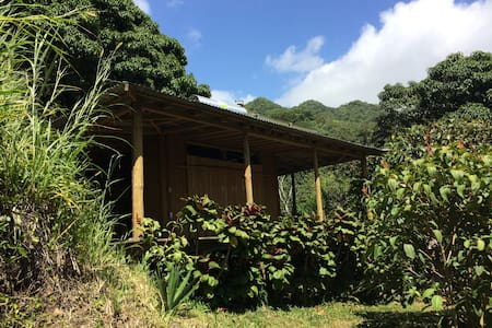 Casa del Mundo: Puerto Rico Rain Forest Retreat