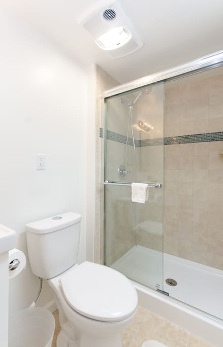 Large shower and skylight