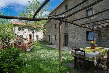 La casa nel bosco-Canal di Sasso - Posola - Casa