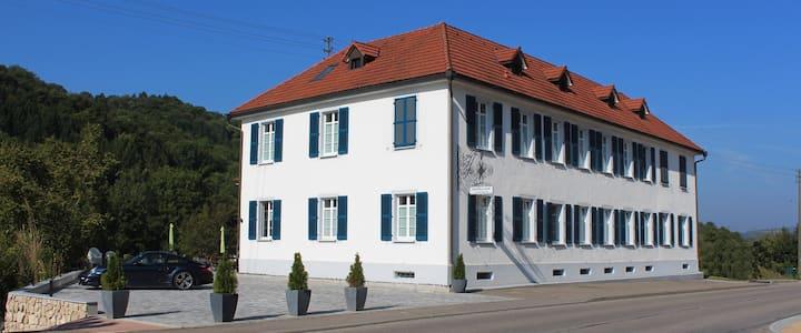 3-Z. Wohnung (GANDHI), 30 Min. nach Zürich