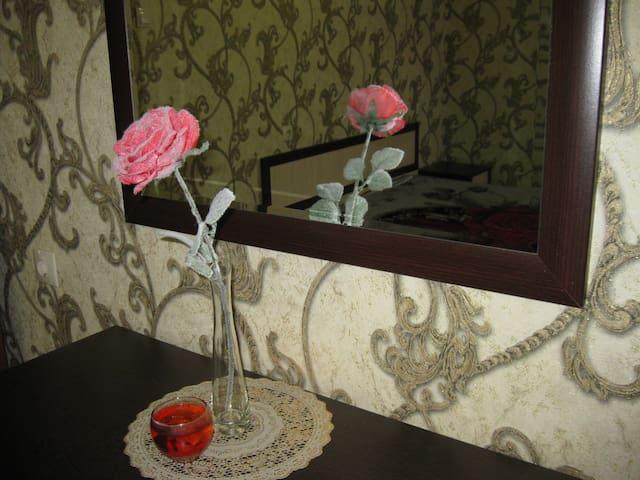 2-x комн. квартира с евро-ремонтом - Voronezh - Lejlighed