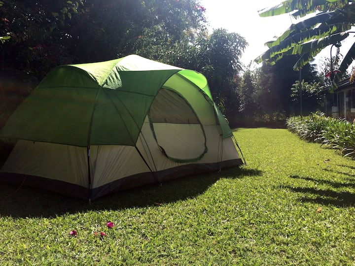 Hostal Yoyita (zona acampado, no incluye tienda)