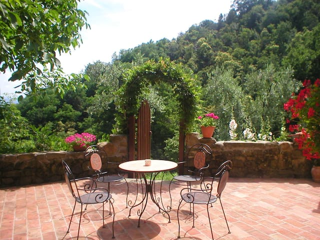 Tuscan olive farm, apartment - Massa e Cozzile PT