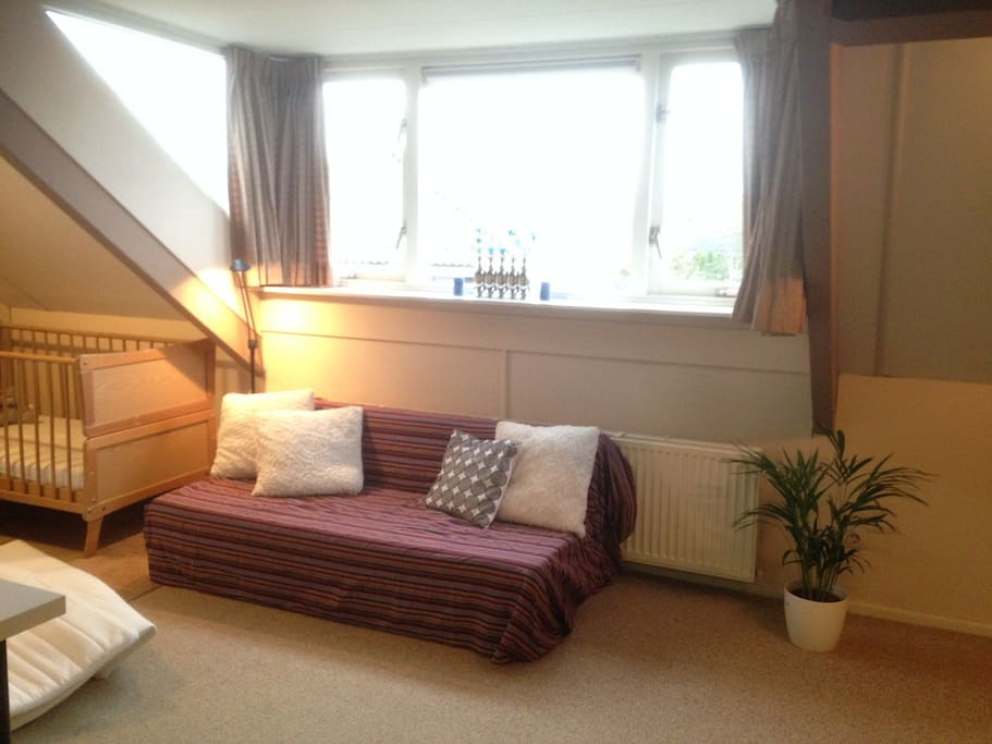 Sitting area. Sofa opens up to a double bed