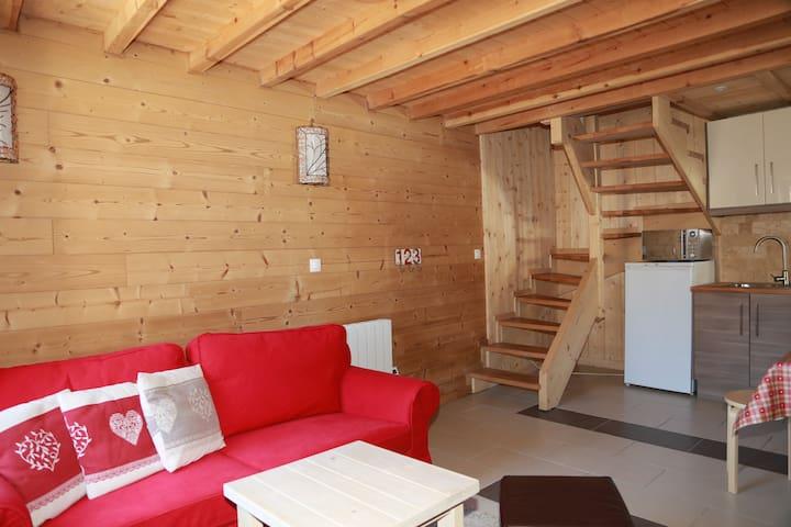 Cosy house in Alpe d'Huez - Huez - House