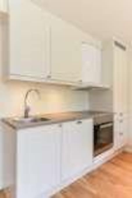Modern kitchen w/ dishwasher, refrigerator and stove