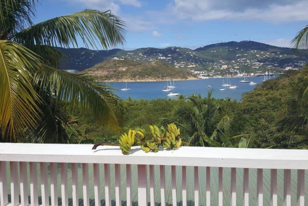 View towards St Thomas