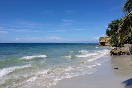 Appartement  les pieds dans l'eau, superbe vue mer