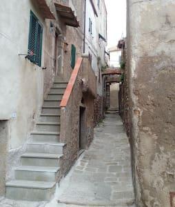 Caratteristica casa gigliese - Isola del Giglio - Apartment
