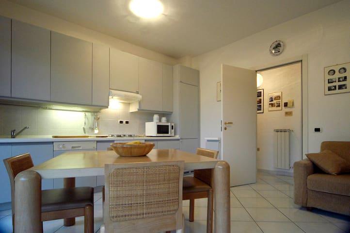 APPARTAMENTO BARBIERI - Santo Stefano Al Mare - Appartement