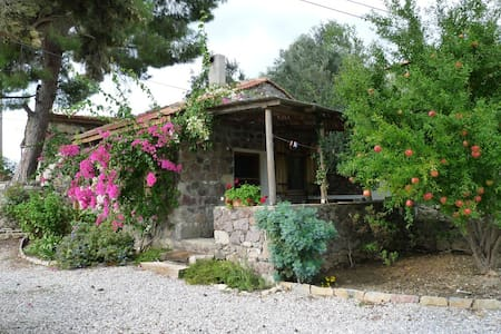COTTAGE IN THE OLIVE FARM @ BADEMLİ - Bademli