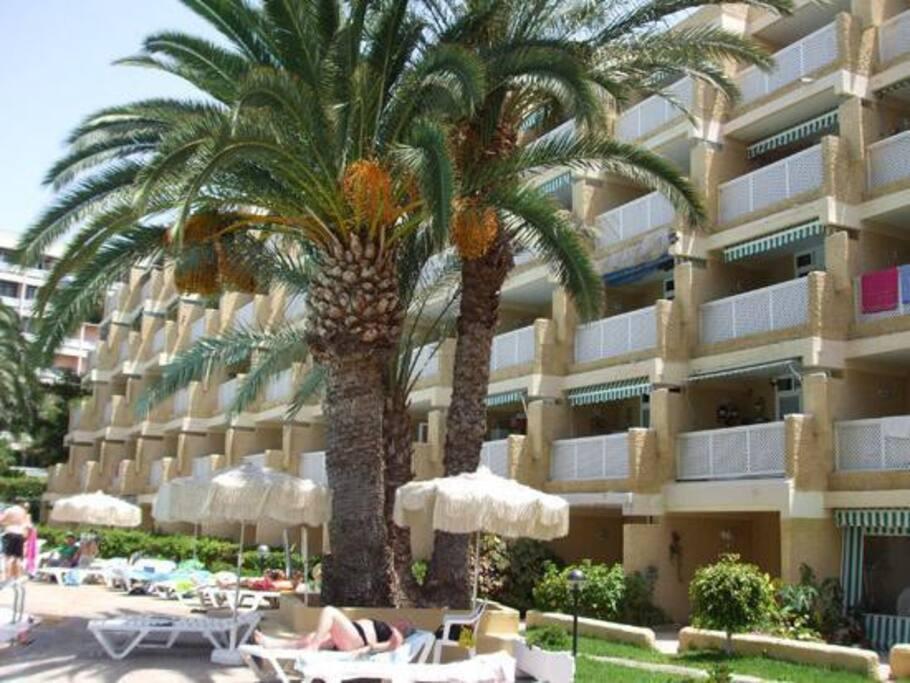 1 bedroom apartment playa del ingl apartments for rent for Apartments jardin del atlantico gran canaria
