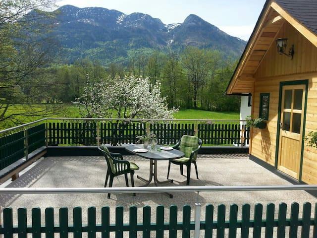 Ferienwohnung in sehr ruhiger Lage - Bad Ischl - Apartament