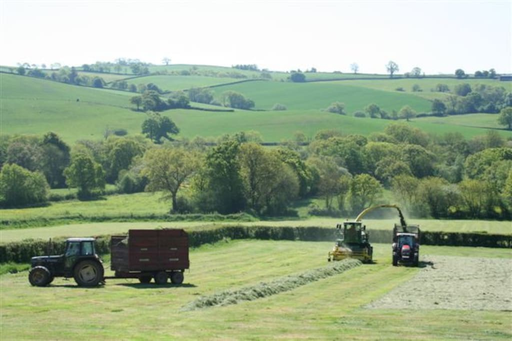 View of haymaking from the deck