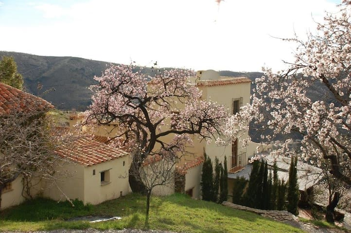 Elegant Cortijo with pool & tennis - Alfornón - Huis