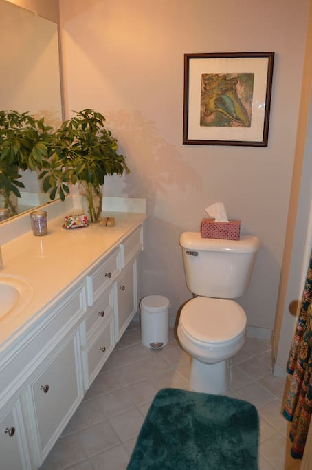 Your private full bathroom