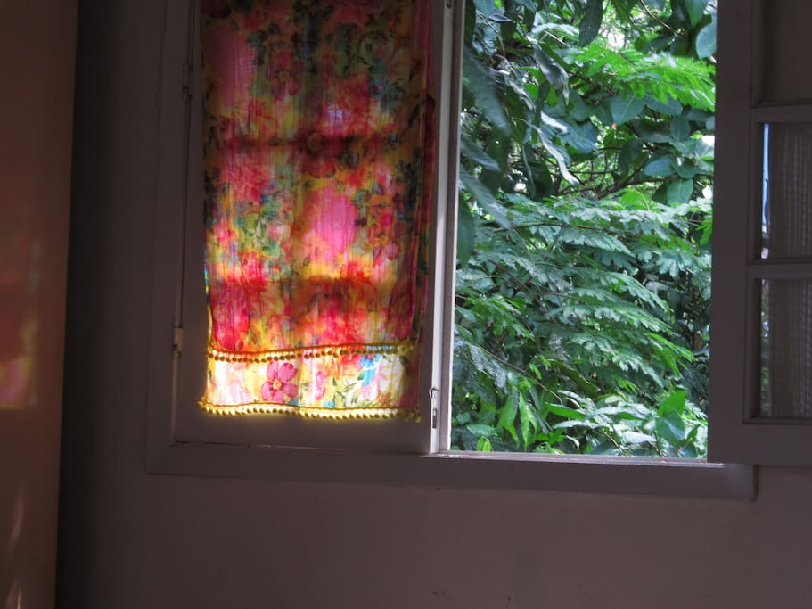 janela - window - ventana