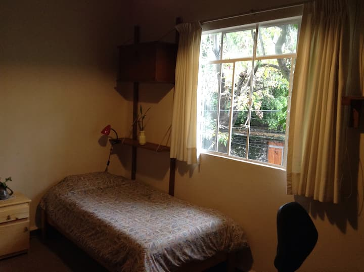 Quiet room in beautiful Santa Catarina, Coyoacan