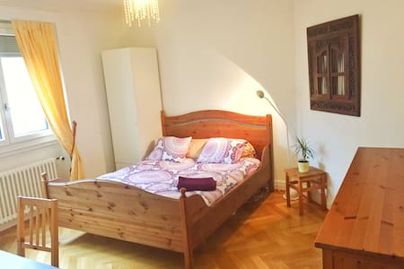 Big room in Plainpalais - Geneva - Apartmen