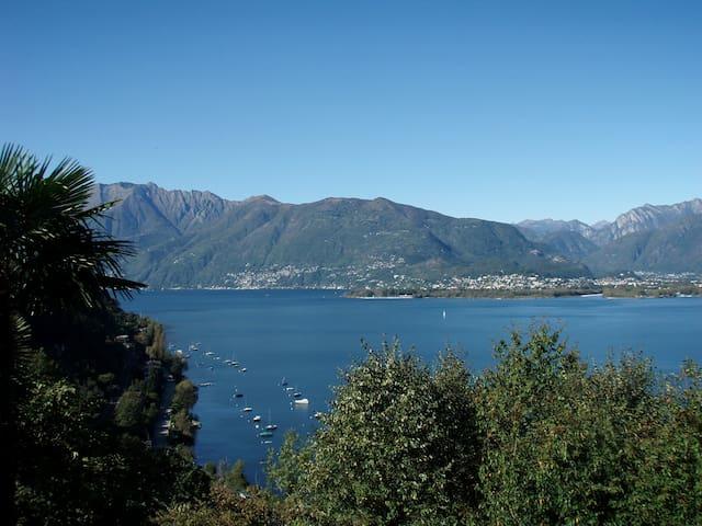 Blick auf Ascona am Lago Maggiore