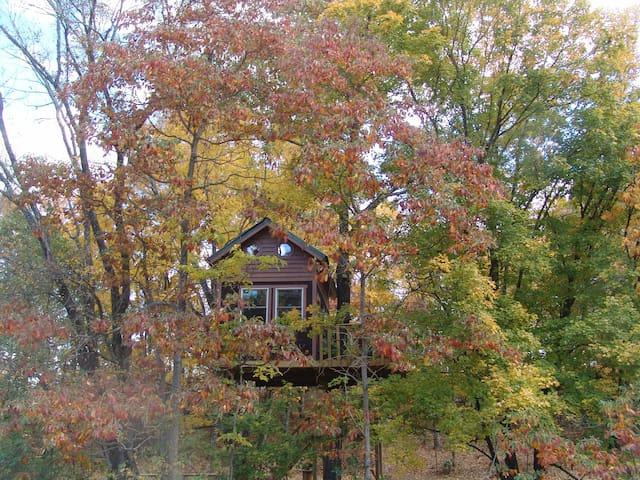 Maple Oak treehouse by Garden of the Gods