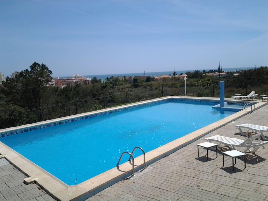 piscine 105 m2 eau de mer.