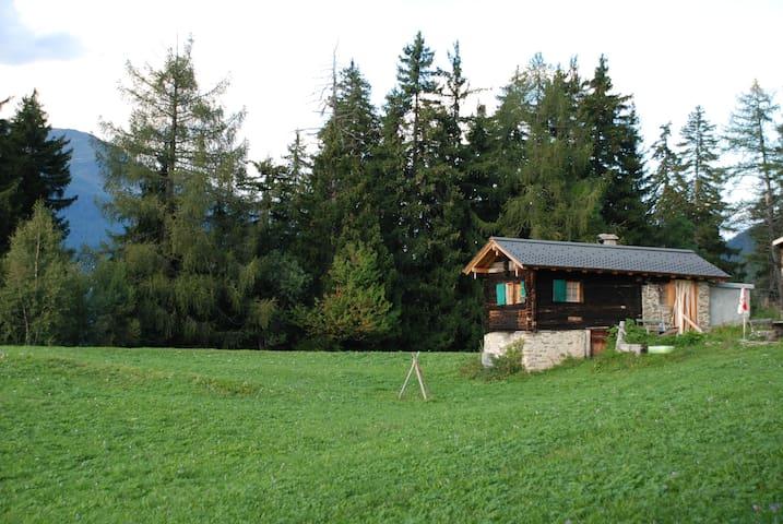 """""""Schnäggehüsi"""" Hütte inmitten herrlicher Natur - Ernen - Skur"""