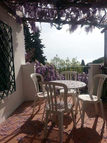 Il Glicine - San Felice Circeo - Huis