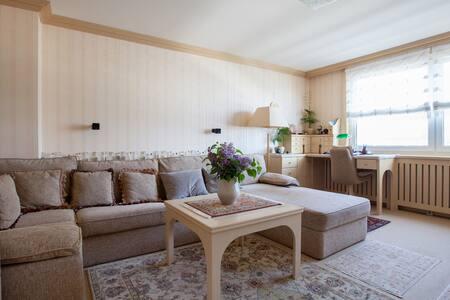 Luxus Wohnung im Herzen Wien
