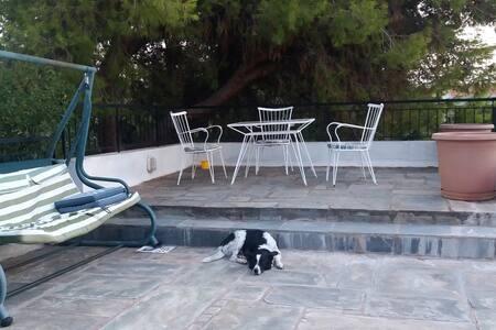 Quiet villa with private garden and veranda - Saronida - Villa