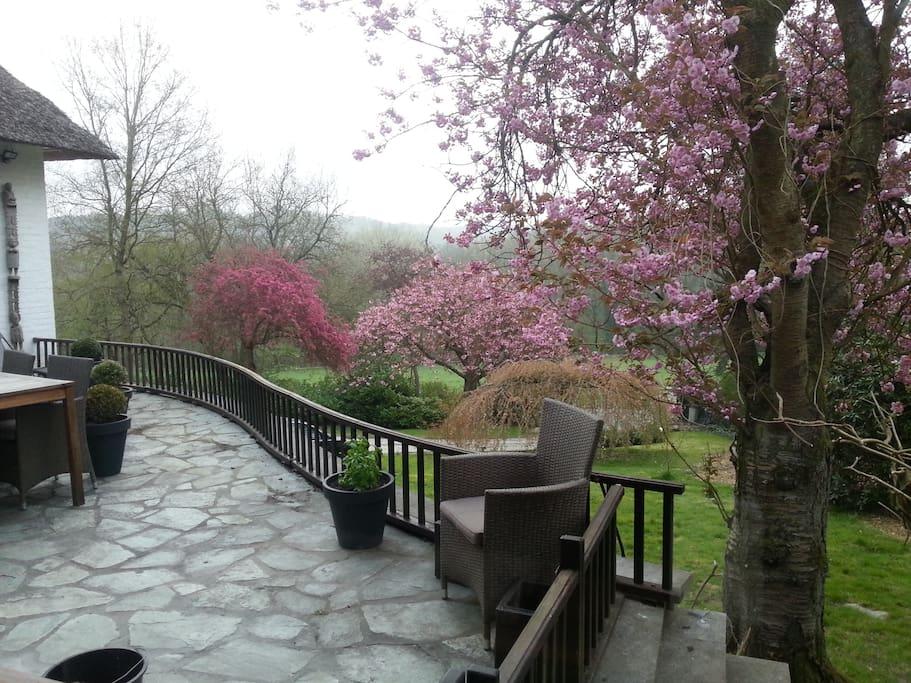 Une partie du jardin vue de la terrasse