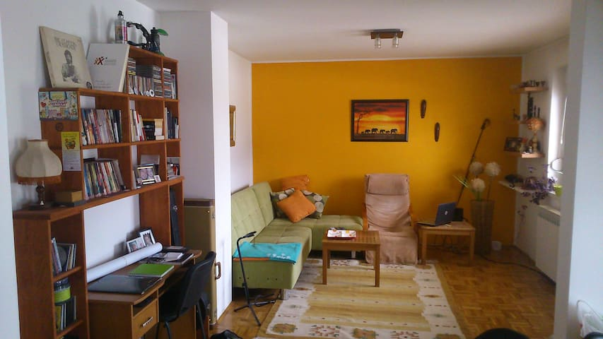 Charming and quiet one-bedroom apt. - Sarajevo - Pis