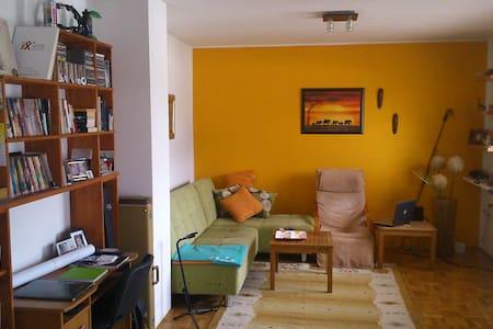 Charming and quiet one-bedroom apt. - Sarajevo - Apartment