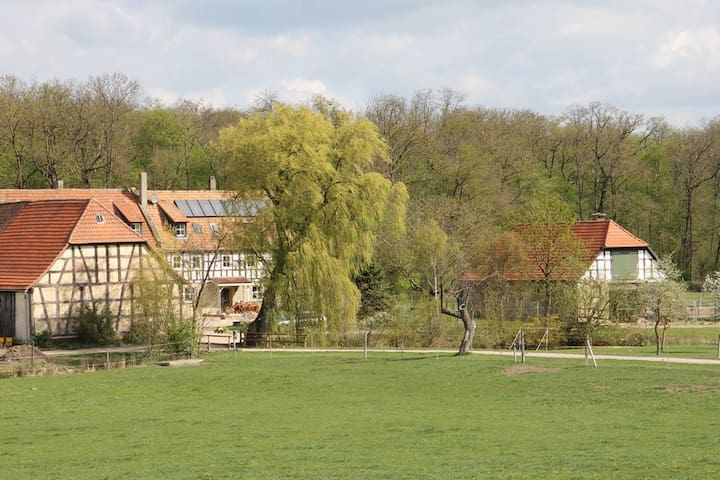 Waldhof Iphofen - FeWo Bildeiche - Iphofen - Byt
