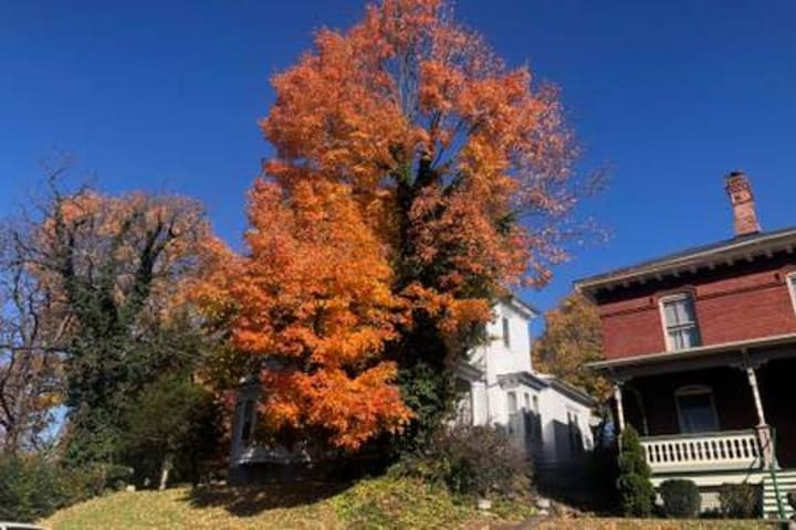 Glorious color makes Staunton a spectacular destination in the fall.
