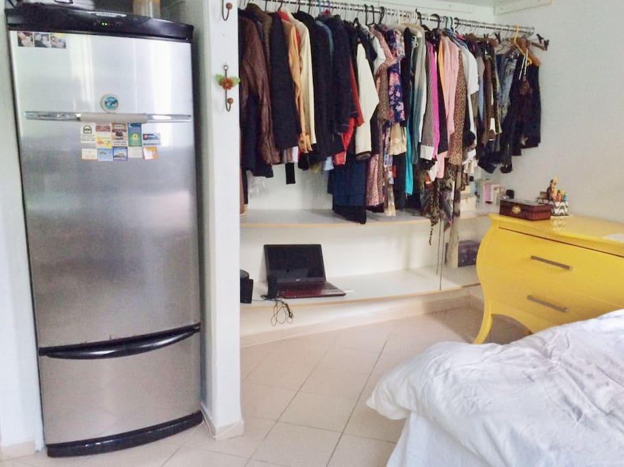 Fridge (no freezer) & clothes rack