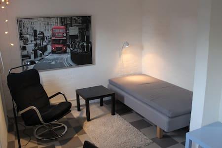 Mysig lägenhet i villa med trädgård - Lund - House